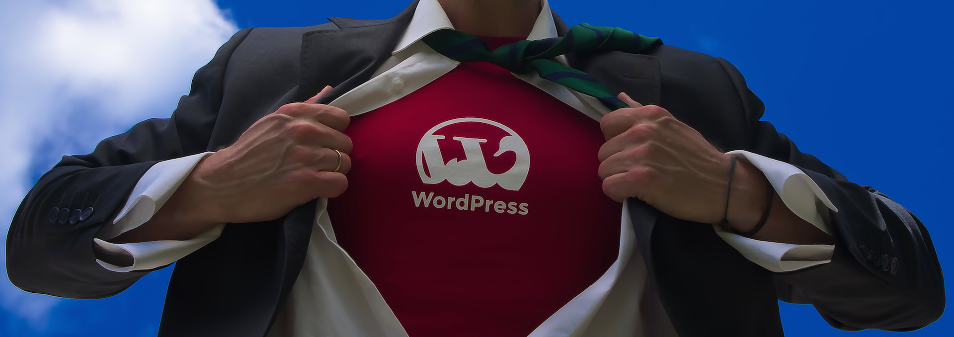 Businessman Wordpress superman